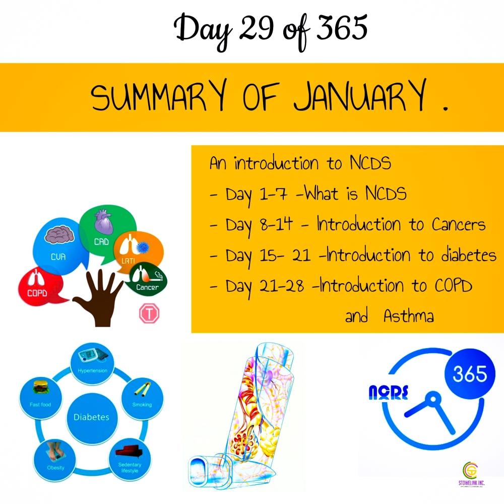 NCDS 365 (15)
